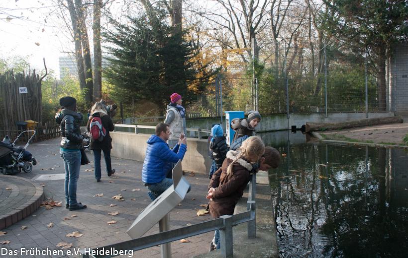 WFT Zoo 2012 – 2