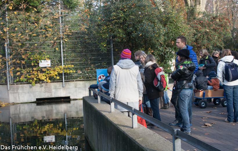 WFT Zoo 2012 – 3